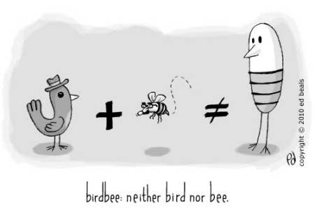 birdbee:neither bird nor bee.